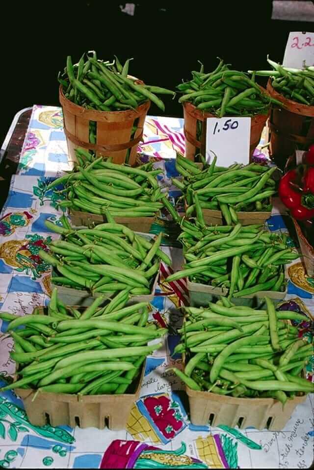 Green Bean Vinaigrette Recipe