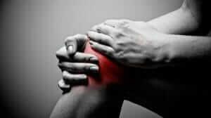 5 Best Exercises for Knee Health